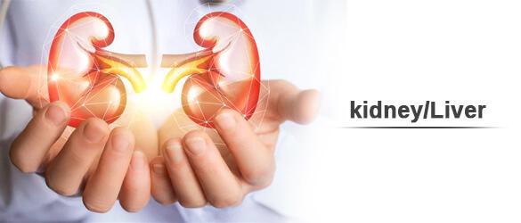 kidney/Liver